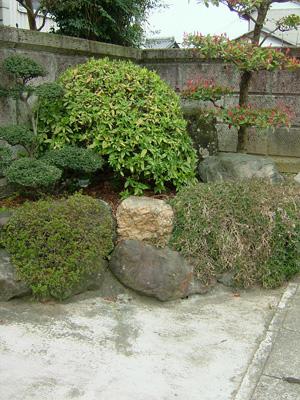 石垣と植木