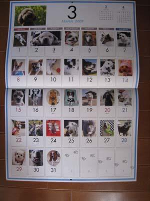 2009年犬めくりカレンダー・大判