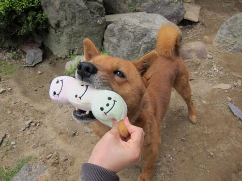 おもちゃ大好き!