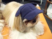 帽子がお似合い